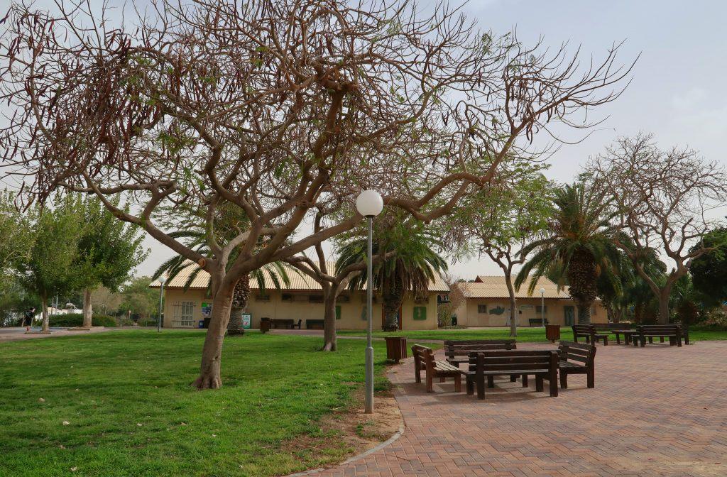Centrum mošavu Zofar