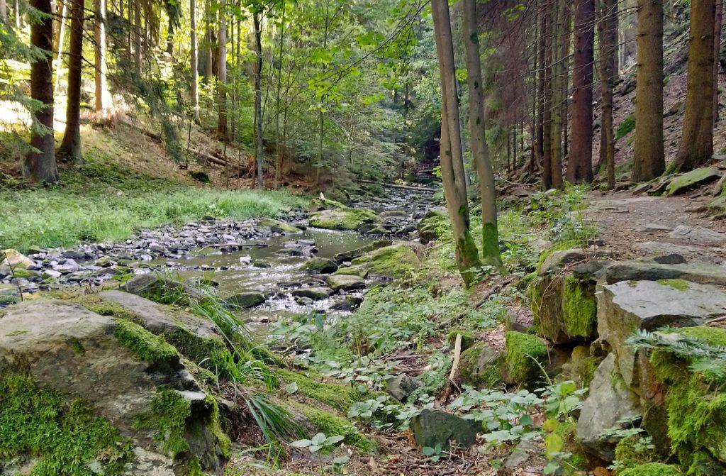 Údolí Doubravy Železné hory